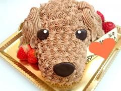 絞りタイプのデコレーションケーキ
